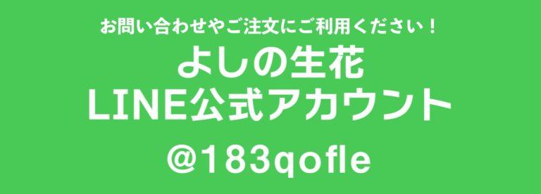 7335d752-3708-4aae-a44b-47ec713f72c2_1_102_o